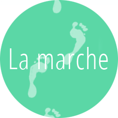 Apprentissage marche